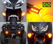 Set LED-knipperlichten voorzijde van de Harley-Davidson Forty-eight XL 1200 X (2010 - 2015)