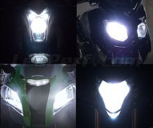 Set lampen voor de koplampen met Xenon-effect voor Harley-Davidson Night Train 1450